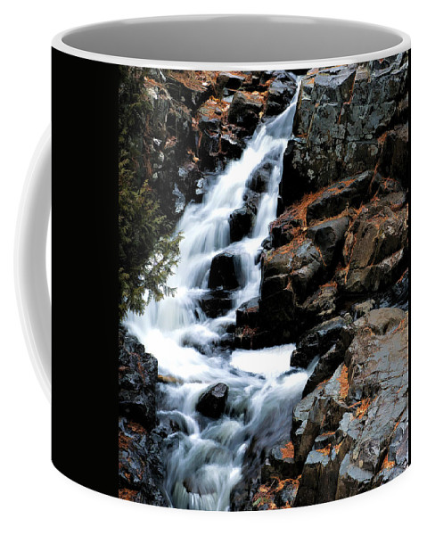Creek Coffee Mug featuring the photograph Chester Creek Falls by Bill Morgenstern
