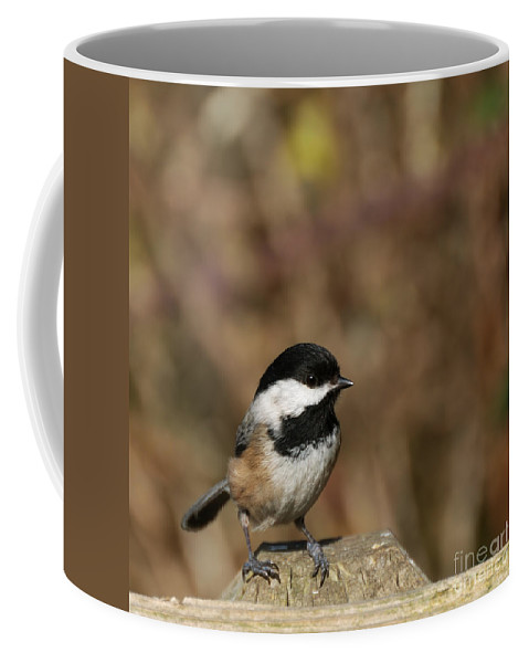 Animal Coffee Mug featuring the photograph Chickadee On Wooden Fence by Marv Vandehey