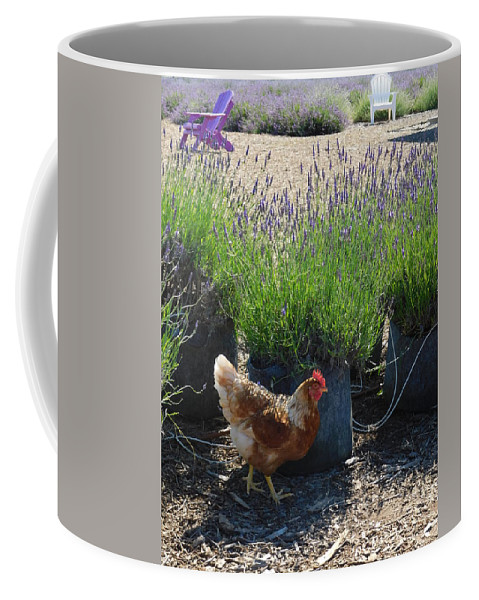 Chicken Coffee Mug featuring the photograph Chicken With Lavender by Shelby Bryson