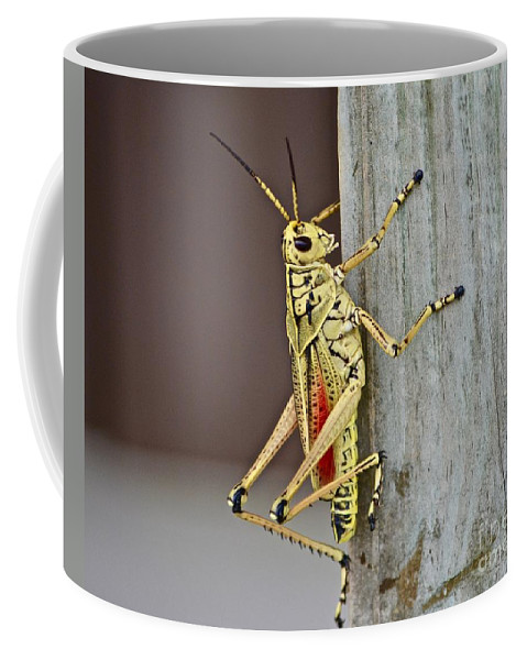 Coffee Mug featuring the photograph Climbing The Wall by Andrea Spritzer