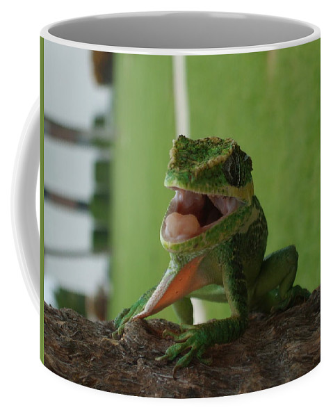 Iguana Coffee Mug featuring the photograph Chilling On Wood by Rob Hans