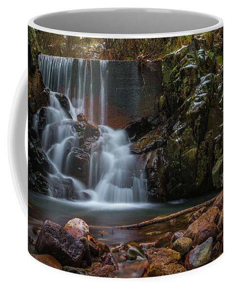 Waterfall Coffee Mug featuring the photograph Chiricahua Mountain Snow Melt by Christian Garcia