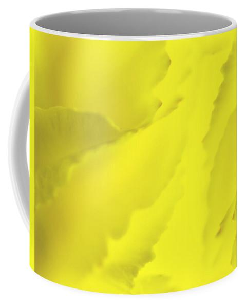 Blossom Coffee Mug featuring the photograph Chrysanthemum by Svetlana Sewell