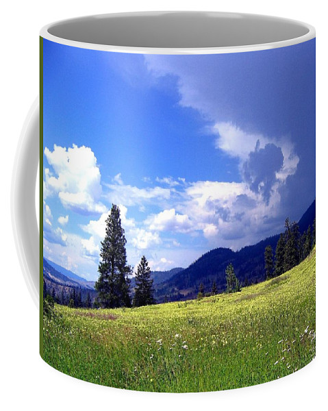 Cinquefoil Coffee Mug featuring the photograph Cinquefoil Blossoms by Will Borden
