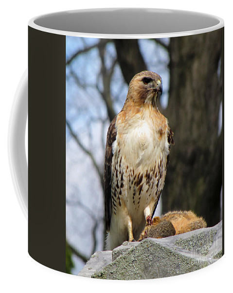 Hawk Coffee Mug featuring the photograph Circle Of Life by September Stone