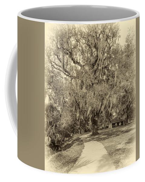 Steve Harrington Coffee Mug featuring the photograph City Park New Orleans - Sepia by Steve Harrington