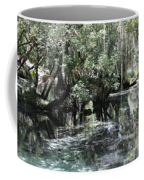 Florida Landscape Coffee Mug featuring the photograph Clear Lithia Springs by Carol Groenen