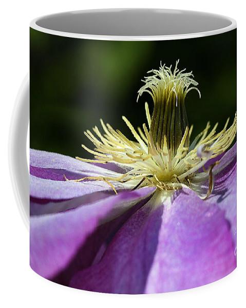 Flower Coffee Mug featuring the photograph Clementas by Deborah Benoit