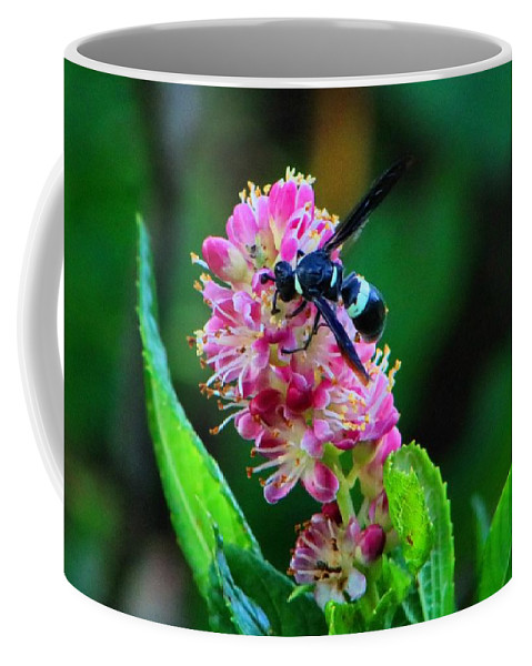 Clethra Coffee Mug featuring the photograph Clethra And Wasp by Kathryn Meyer