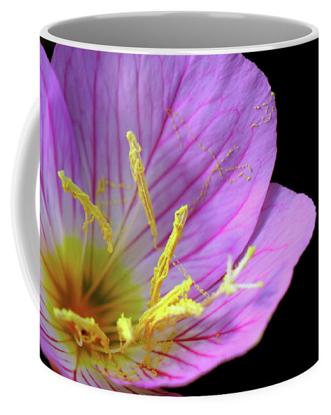 Flower Coffee Mug featuring the photograph Climactic Evening Primrose by April Zaidi