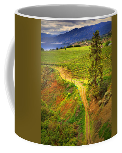 Tree Coffee Mug featuring the photograph Climbing In Colour by Tara Turner