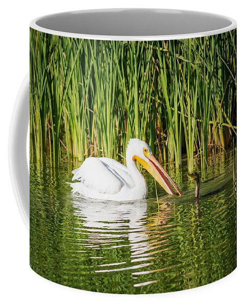 Close Call Coffee Mug featuring the photograph Close Call For The Cormorant by Debra Martz