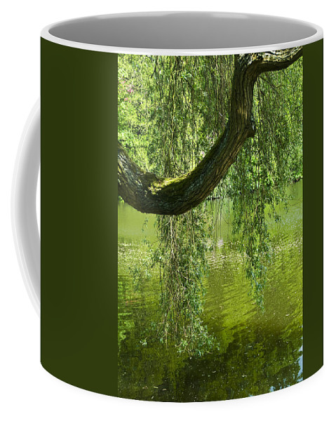 Countryside Coffee Mug featuring the photograph Close To Water by Svetlana Sewell