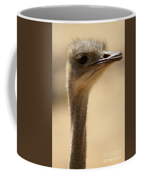 Psi Coffee Mug featuring the photograph Close Up Of An Ostrich by Moran Malachi