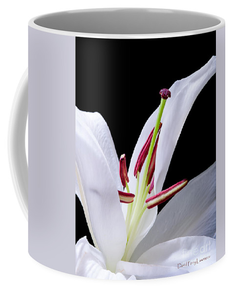 Lilies Coffee Mug featuring the photograph Close-up Photograph Of A White Oriental Lily by David Perry Lawrence