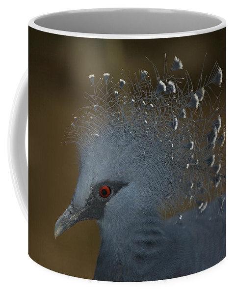 One Animal Coffee Mug featuring the photograph Closeup Of A Captive Victoria Crowned by Tim Laman