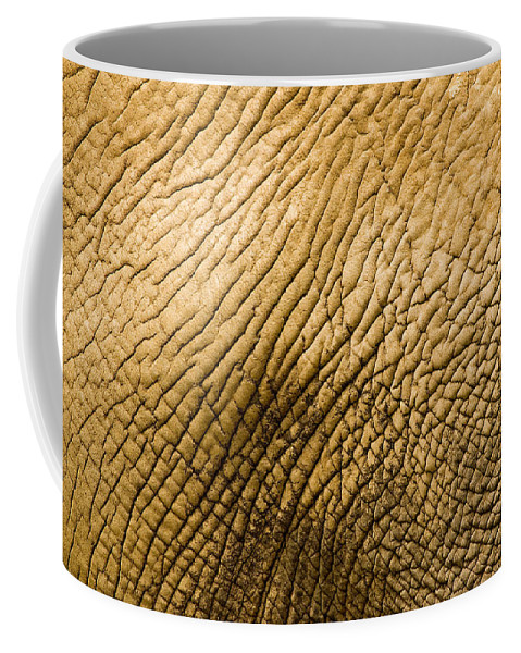 One Animal Coffee Mug featuring the photograph Closeup Of An African Elephant by Tim Laman