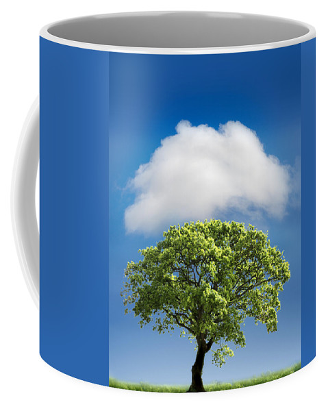 Tree Coffee Mug featuring the photograph Cloud Cover by Mal Bray
