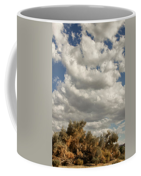 Desert Coffee Mug featuring the photograph Clouds Rising Palm Springs by William Dey