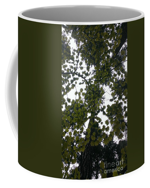 Maple Coffee Mug featuring the photograph Cloudy Skies Through Maple by LKB Art and Photography