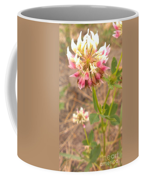 Clover Flowers Coffee Mug featuring the photograph Clover Flower by LKB Art and Photography