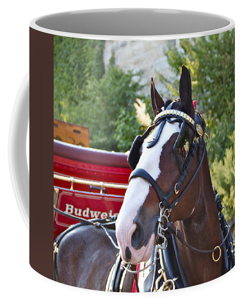 Clydesdale Horse Draft Esp Eastern State Penitentiary Budweiser Coffee Mug featuring the photograph Clydesdale At Esp by Alice Gipson