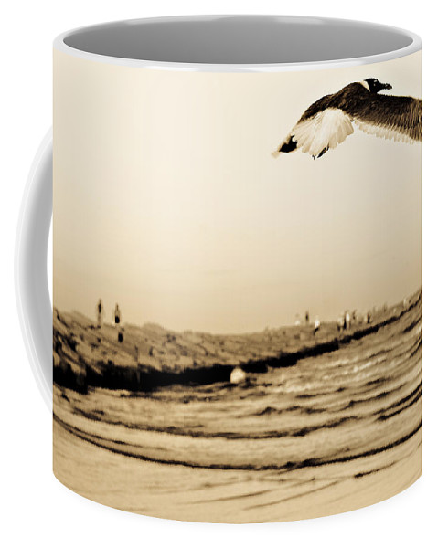 Bird Coffee Mug featuring the photograph Coastal Bird In Flight by Marilyn Hunt