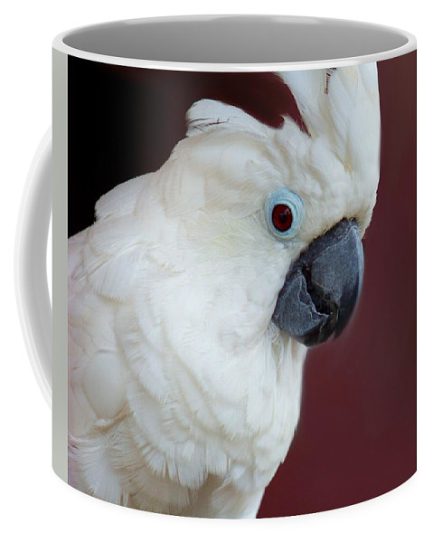 Cockatoo Coffee Mug featuring the photograph Cockatoo Portrait by Jai Johnson
