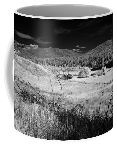 B&w Coffee Mug featuring the photograph Cocolala Creek 2 by Lee Santa