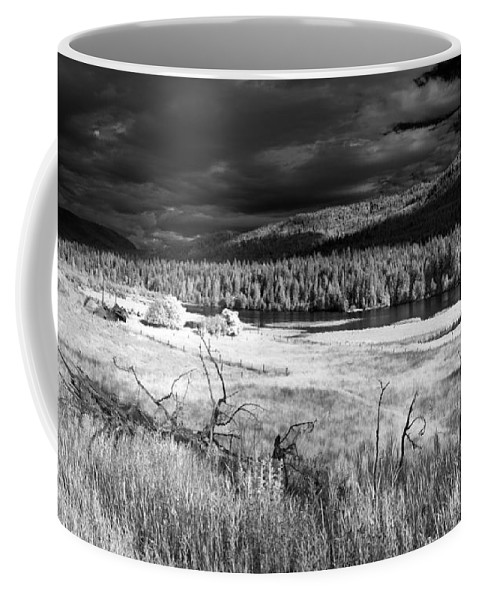 Infrared Landscape Coffee Mug featuring the photograph Cocolala Creek by Lee Santa