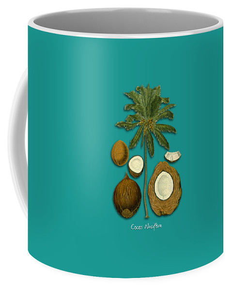 Cocos Nucifera Coffee Mug featuring the digital art Cocos Nucifera by Justyna JBJart
