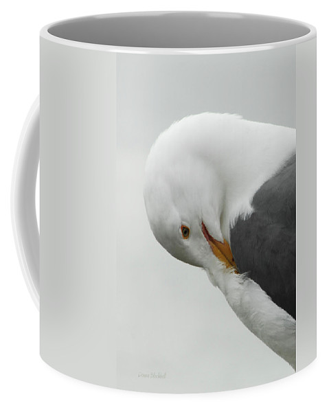Seagull Coffee Mug featuring the photograph Cold Beak by Donna Blackhall