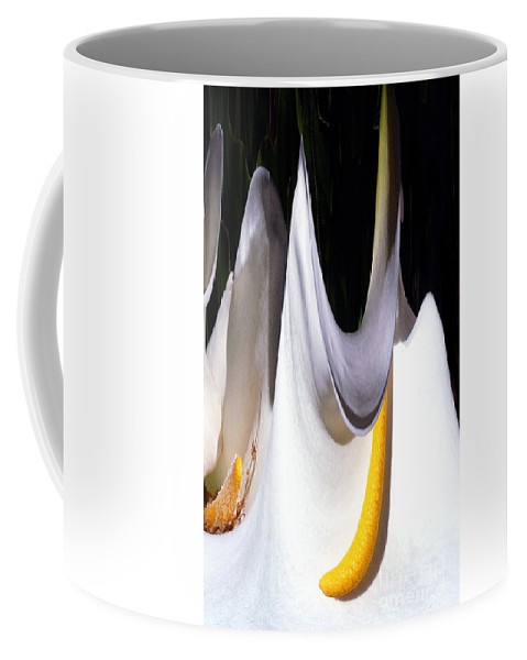Digital Art Coffee Mug featuring the photograph Cold Calla Poles by Norman Andrus
