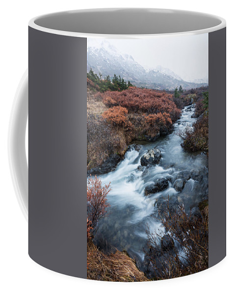 Alaska Coffee Mug featuring the photograph Cold Creek In Autumn by Tim Newton