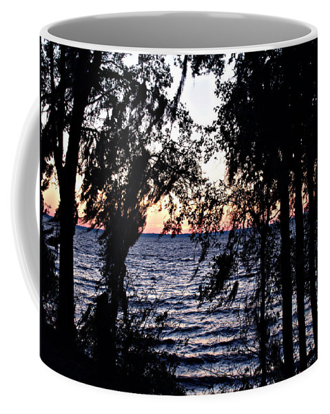 Winter Coffee Mug featuring the photograph Cold Winter Sunset by Bob Johnson