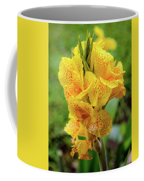 Colombia Coffee Mug featuring the photograph Colombian Flower by Michael Weber