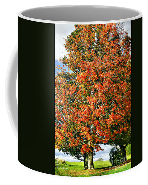 Fall Coffee Mug featuring the photograph Color 2009 by Deborah Benoit