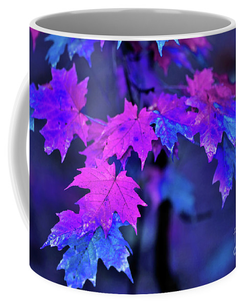 New England Coffee Mug featuring the photograph Color Me... by Betty LaRue