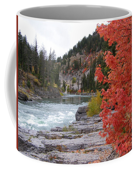 River Coffee Mug featuring the photograph Color On The Snake by DeeLon Merritt