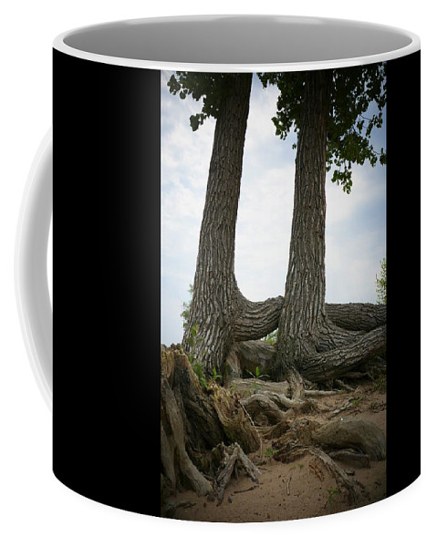 Tree Coffee Mug featuring the photograph Colorado Entanglement by Louise Browne