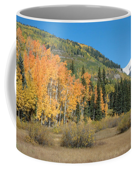 Aspen Coffee Mug featuring the photograph Colorado Gold by Jerry McElroy