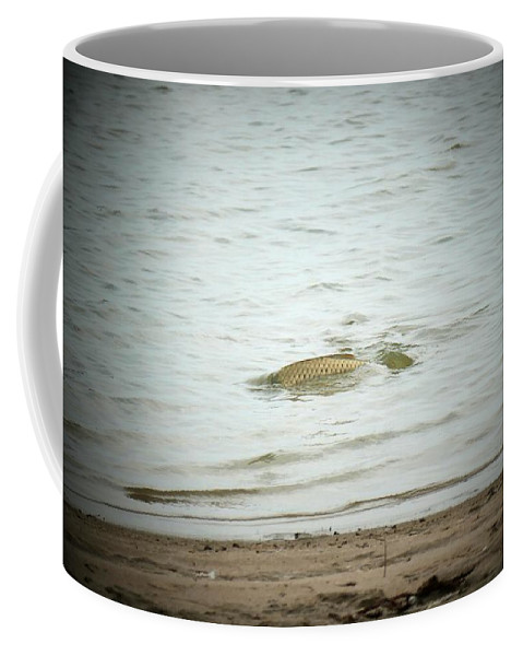 Fish Coffee Mug featuring the photograph Colorado Net Fishing by Louise Browne