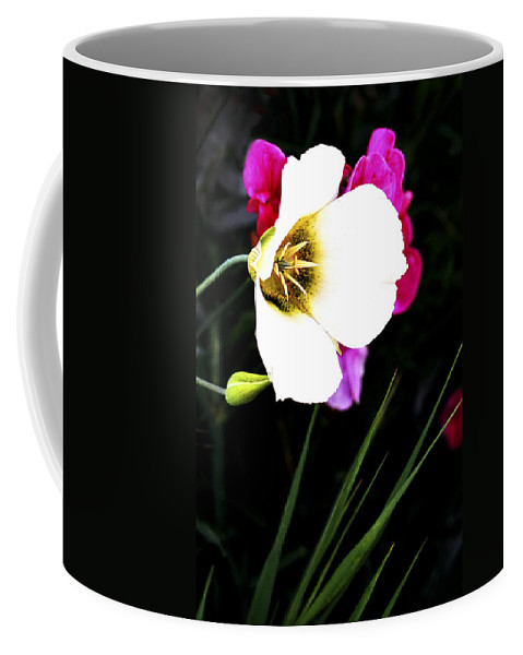 Wildflower Coffee Mug featuring the photograph Colorado Wildflower1 by Marilyn Hunt