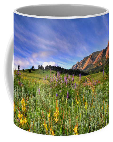 Colorado Coffee Mug featuring the photograph Colorado Wildflowers by Scott Mahon