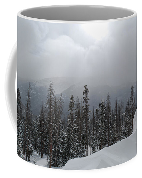 Berthoud Pass Coffee Mug featuring the photograph Colorado Winter Peace by Cascade Colors