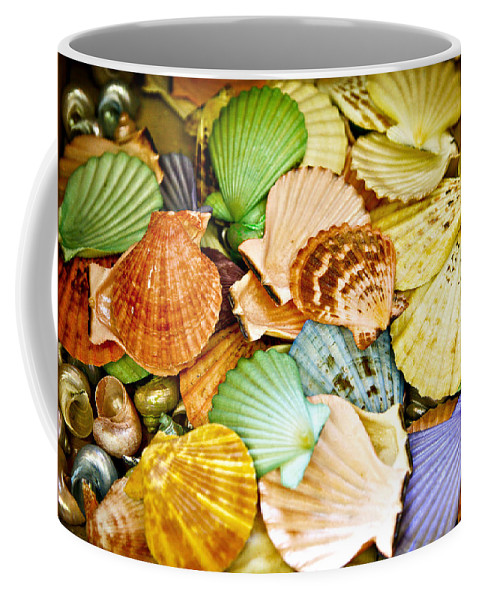 Shell Coffee Mug featuring the photograph Colored Shells by Marilyn Hunt