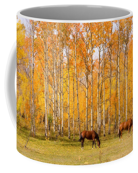 Country Coffee Mug featuring the photograph Colorful Autumn High Country Landscape by James BO Insogna