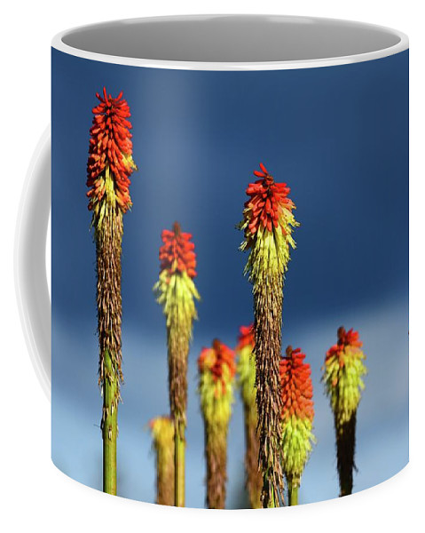 Oregon Coffee Mug featuring the photograph Embers by Cher Rydberg