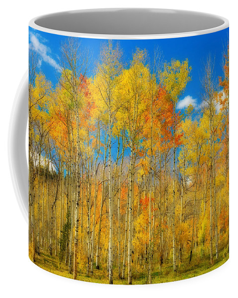 Aspens Coffee Mug featuring the photograph Colorful Colorado Fall Foliage by James BO Insogna