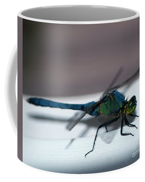 Clay Coffee Mug featuring the photograph Colorful Dragon by Clayton Bruster